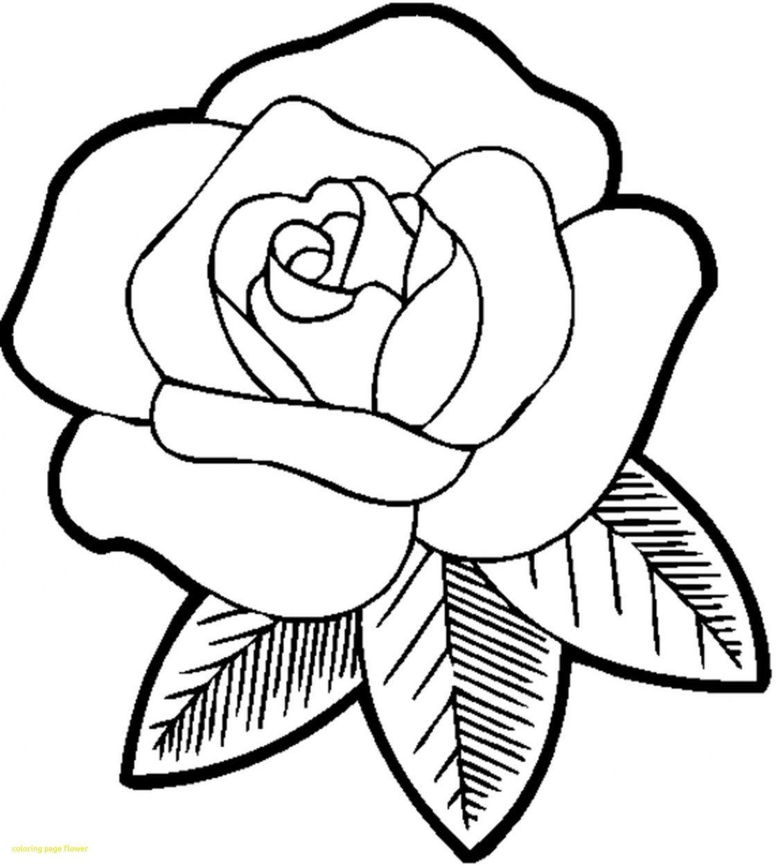 21 Brilliant Picture Of Flowers Coloring Pages Dibujo De Rosa