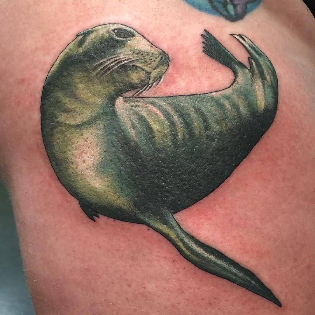 image result for seal tattoos my mosaic pinterest seal tattoo rh pinterest ca Snake Tattoo Outline Small Ocean Tattoos
