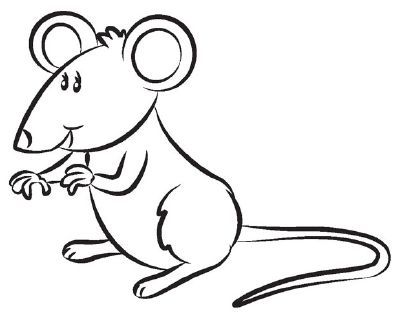 Pin By شريف اشرف On Sketches Of Dormice Mice And Rats Mouse Sketch Sketches Animal Drawings