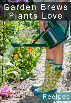 Easy brews for garden