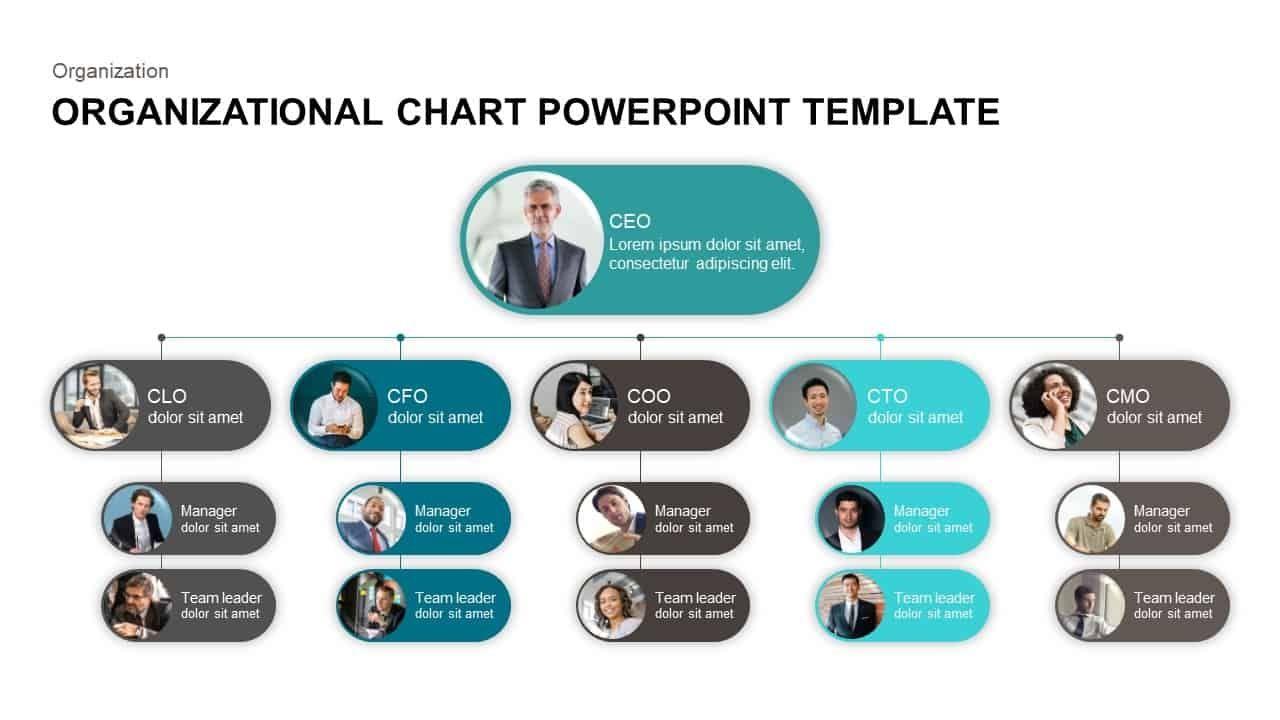 40 Organizational Chart Templates Word Excel Powerpoint Organizational Chart Org Chart Organizational Chart Template