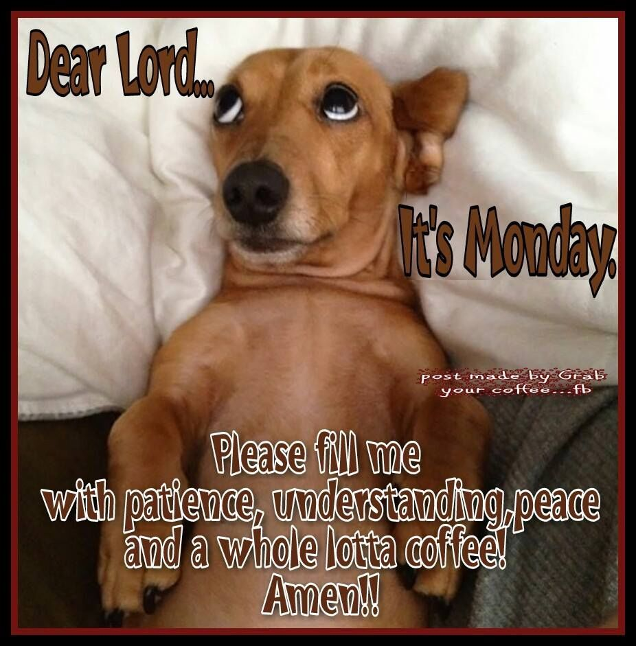 Dear Lord...It's Monday Monday humor, Monday coffee
