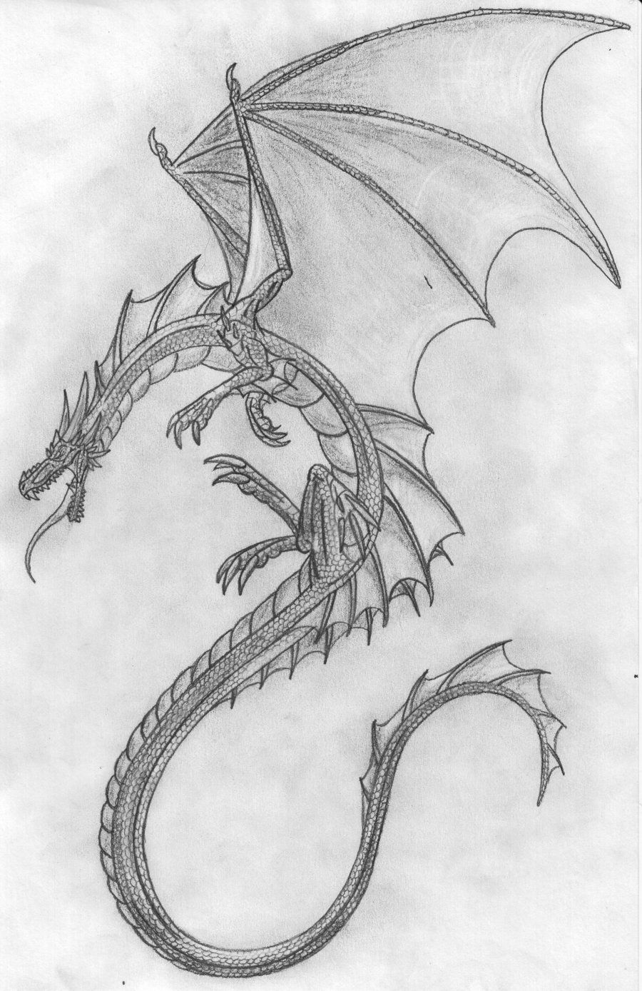 Pencil drawings pencil dragon by scatha the worm traditional art drawings fantasy 2010
