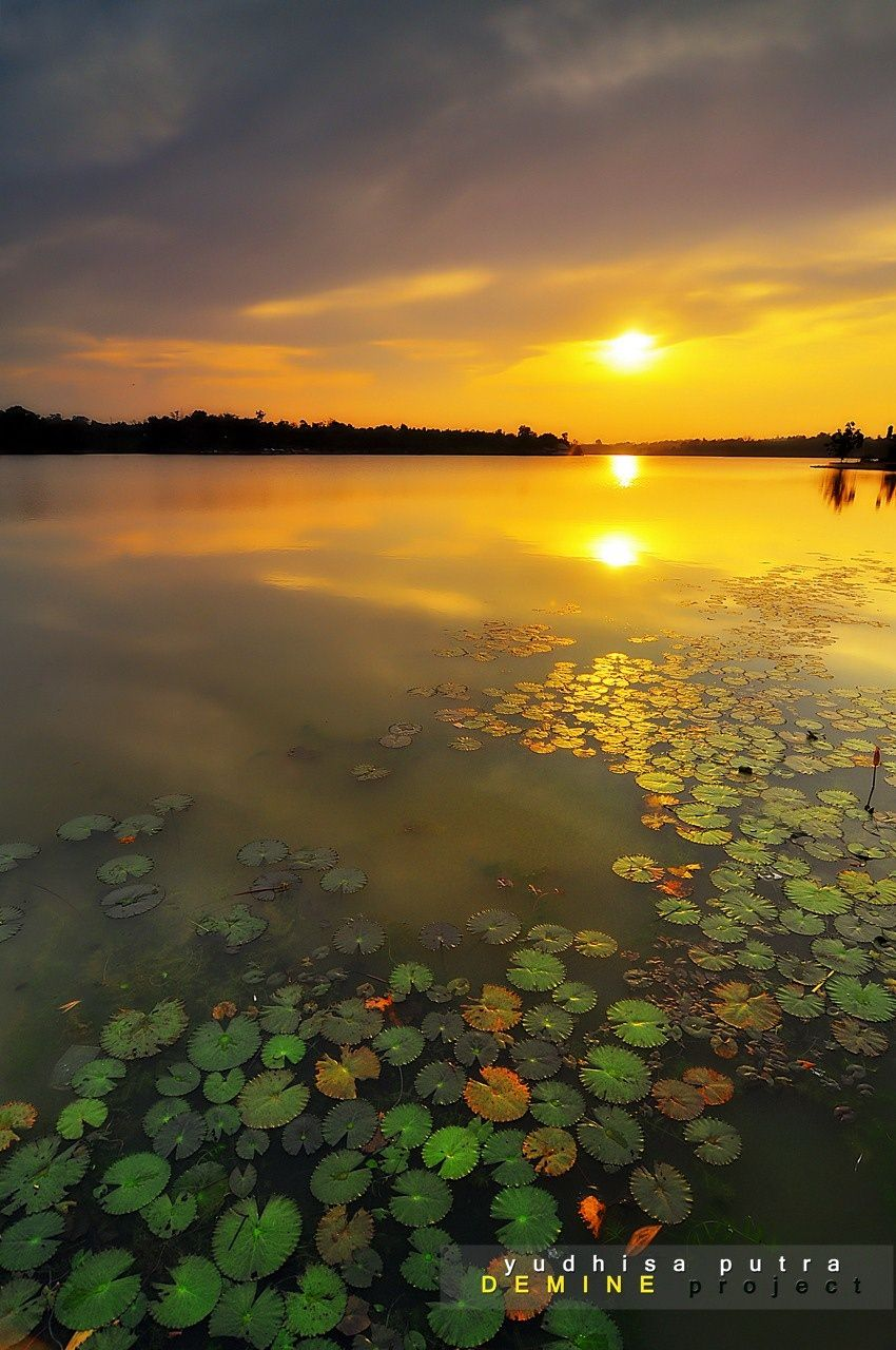 Goldie Light on 500px by Yudhisa Putra, Pekanbaru, Indonesia☀Nikon D90-f/8-1/80s-12mm-iso200, 850✱1280px-rating:92.4