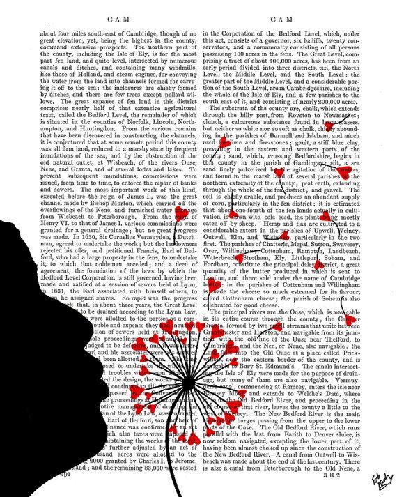Dandelion Hearts Digital Art Illustration Mixed Media door FabFunky, $15.00