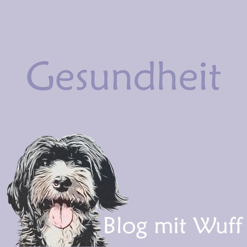Gesundheit Des Hundes Hundeprodukte Hunde Hundeerziehung