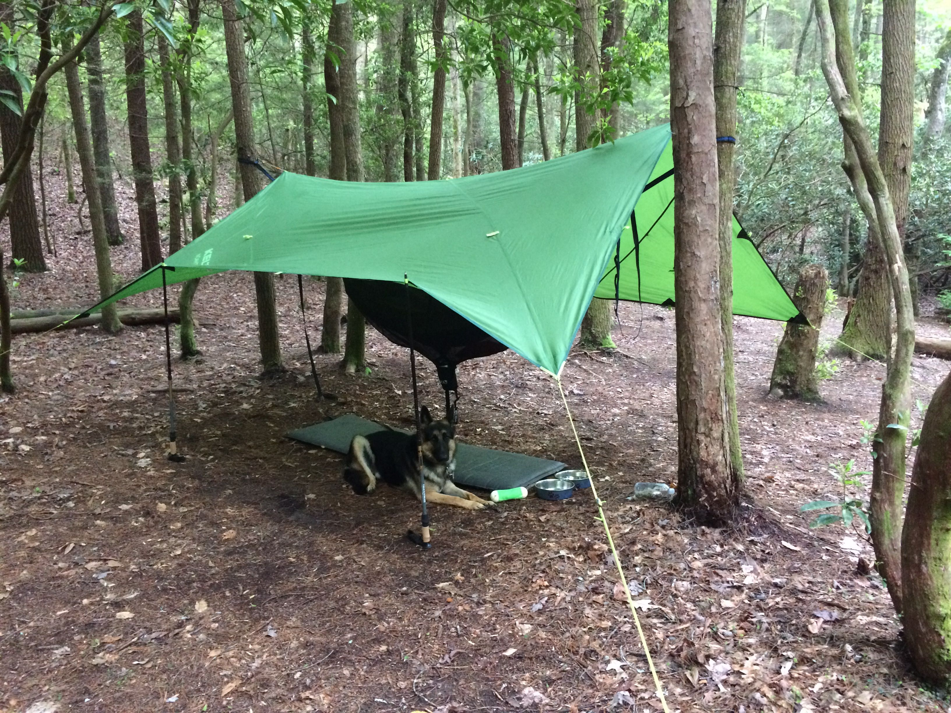 trail and connect fcac orange the tr a hiking on thru tent tentsile appalachian with hammock tents tree