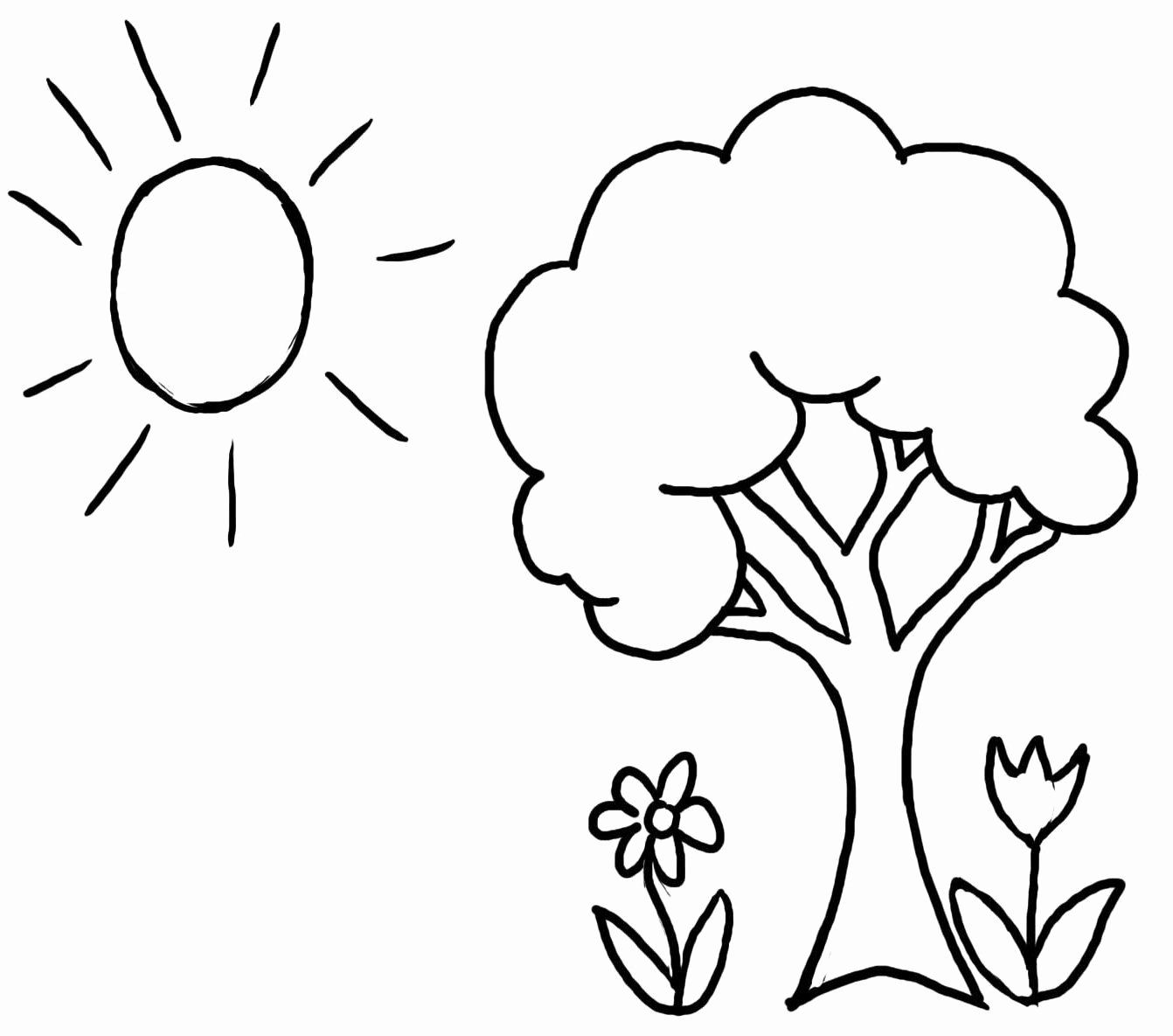 Tree Coloring Pictures To Print Unique Coloring Page Tree And Flower Coloring Pages Gallery Coloring Pages Nature Tree Coloring Page Spring Coloring Pages