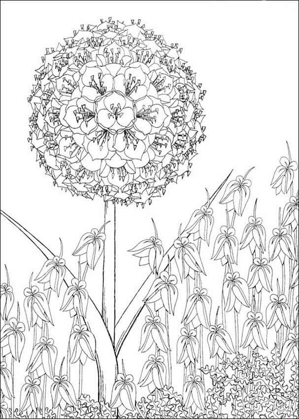 Tree Smile Flower Coloring Pages The Coloring Pages random - fresh dltk birds coloring pages