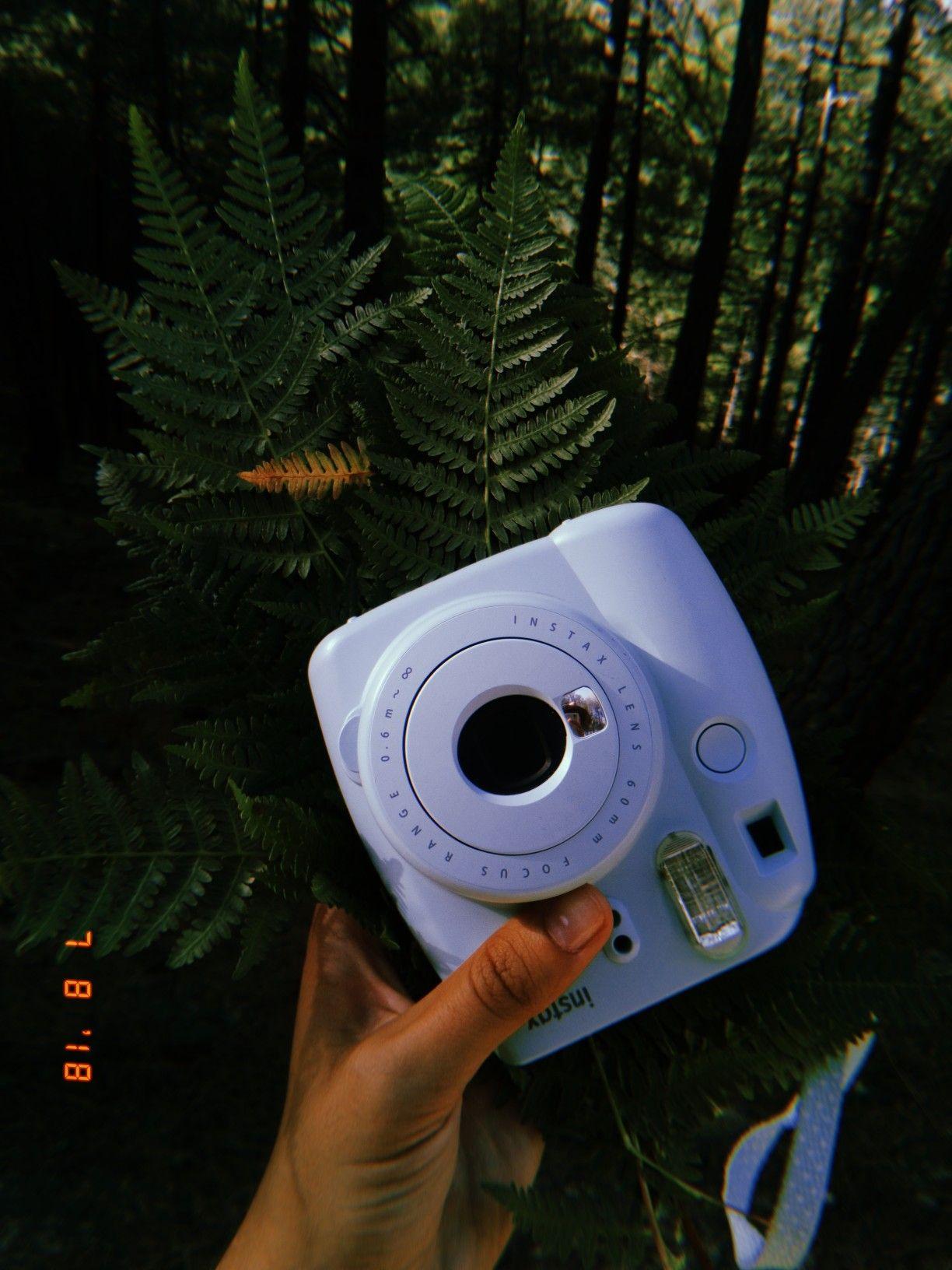 Just loving this Huji app! | •photography• | Photos tumblr