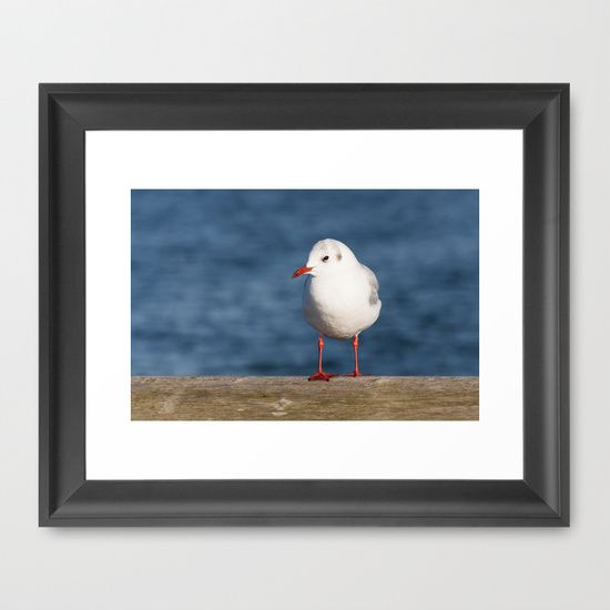 Sea Gull Framed Art Print #posters #artworks #graphic Design #texture # Inspiration #artists #stretched Canvas #illustrations #room #products # Pretty #colour ...