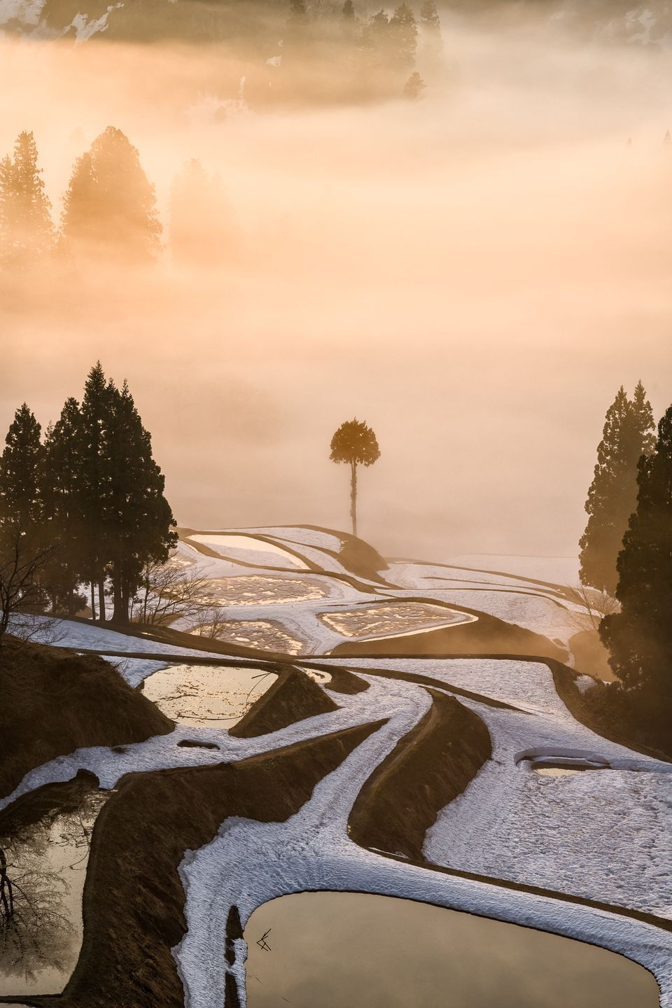 2018 Travel Photographer Of The Year Contest Winners National Geographic Photography Travel National Geographic Travel