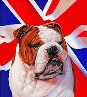 English Bulldog Celtic Cross Stitch Great Britain Great British