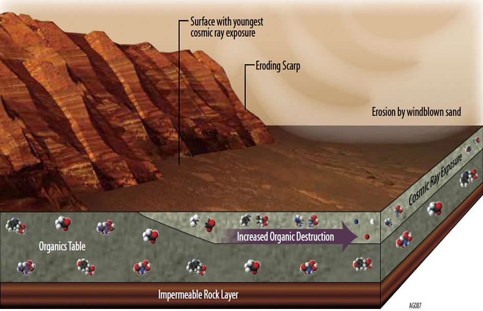 Whatever organic chemicals may be produced on Mars or delivered to Mars face several possible modes of being transformed or destroyed. Organic chemicals are molecular building block of life, although they can be made without the presence of life. Whether or not organic chemicals are produced by processes on Mars, some are delivered to the planet aboard meteorites and dust from asteroids and comets.