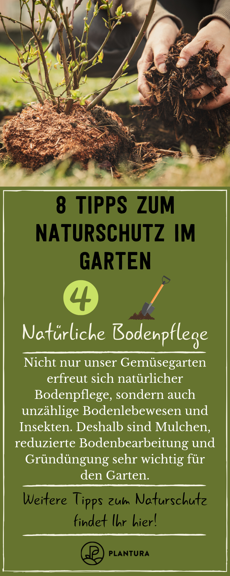 Naturschutz Im Garten 8 Tipps Fur Das Ganze Jahr Garten Naturgarten Tipps