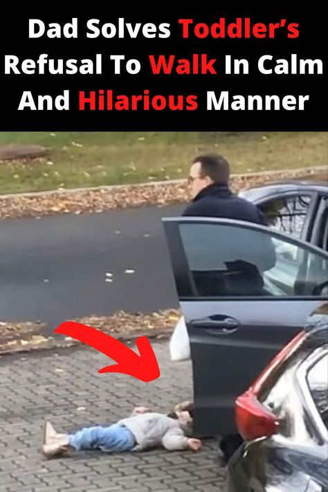 Dad Solves Toddler's Refusal To Walk In Calm And Hilarious Manner