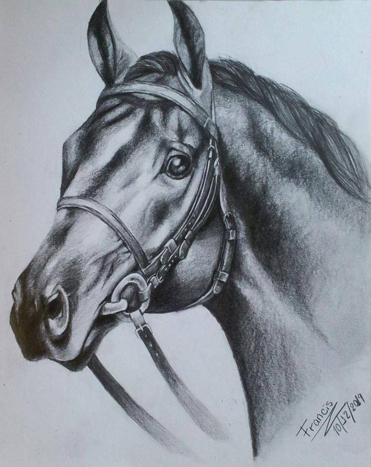 Dibujo De Caballo Con Lapiz De Grafito Autor Francis Torres Animals And Pets Horses Animals