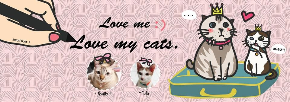 cover facebook : love me .. love my cats.