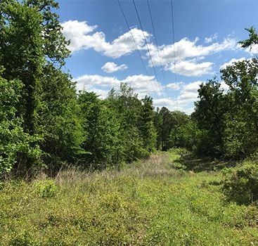 View All Texas Acres Properties Owner Financed Land In East Texas Texas Acres Acre Great Places Land For Sale