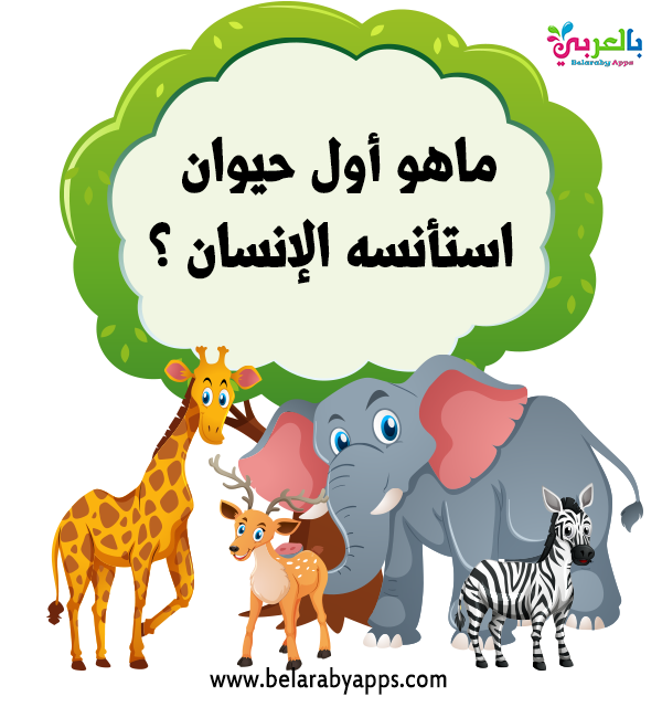 اسئله سهله للاطفال عن الحيوانات