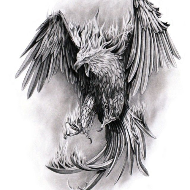 pin by david firmage on tattoo ideas pinterest tattoo phoenix and tatoo. Black Bedroom Furniture Sets. Home Design Ideas