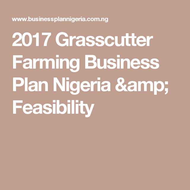 Grasscutter Farming Business Plan Nigeria  Feasibility