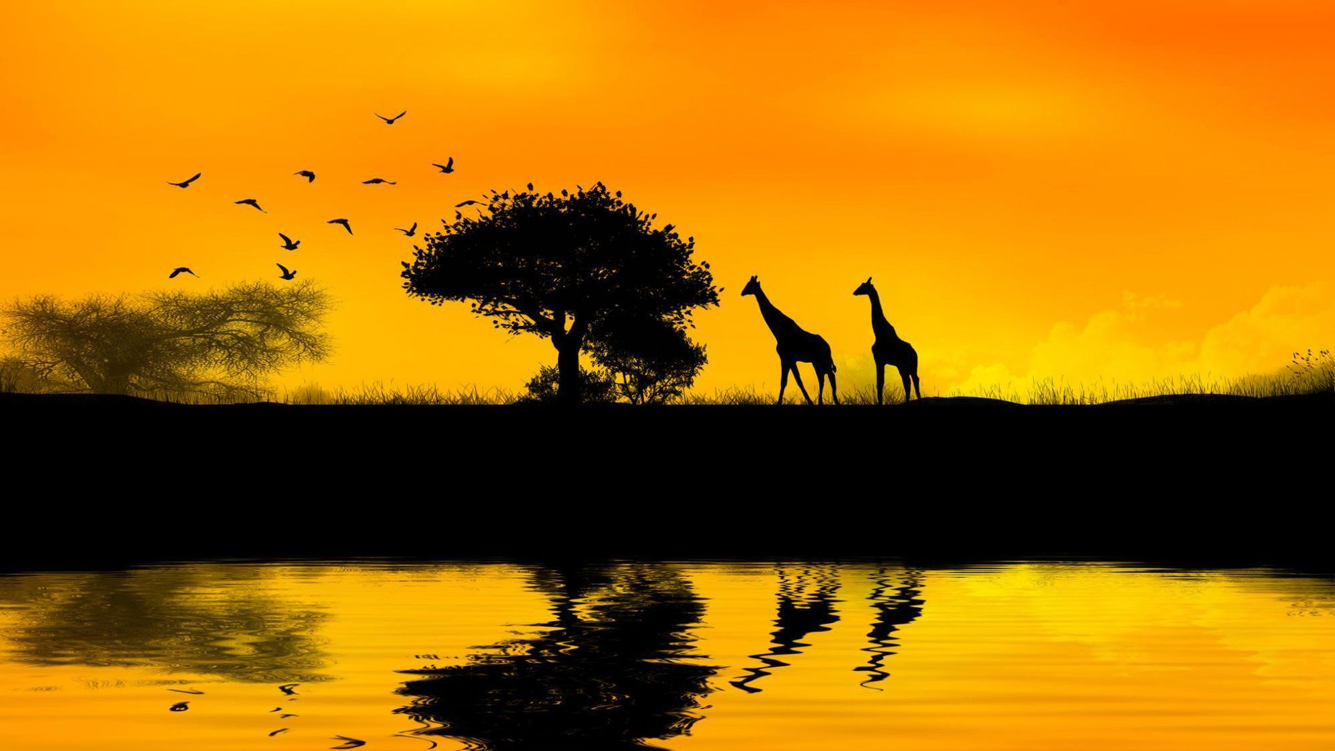 African Wallpapers Wallpaper In 2019 Sunset Pictures