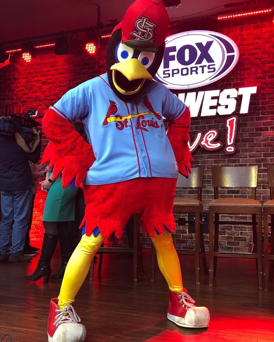 "the latest fe1d1 33289 Ballpark Village STL on Instagram: ""Fredbird sporting the ..."