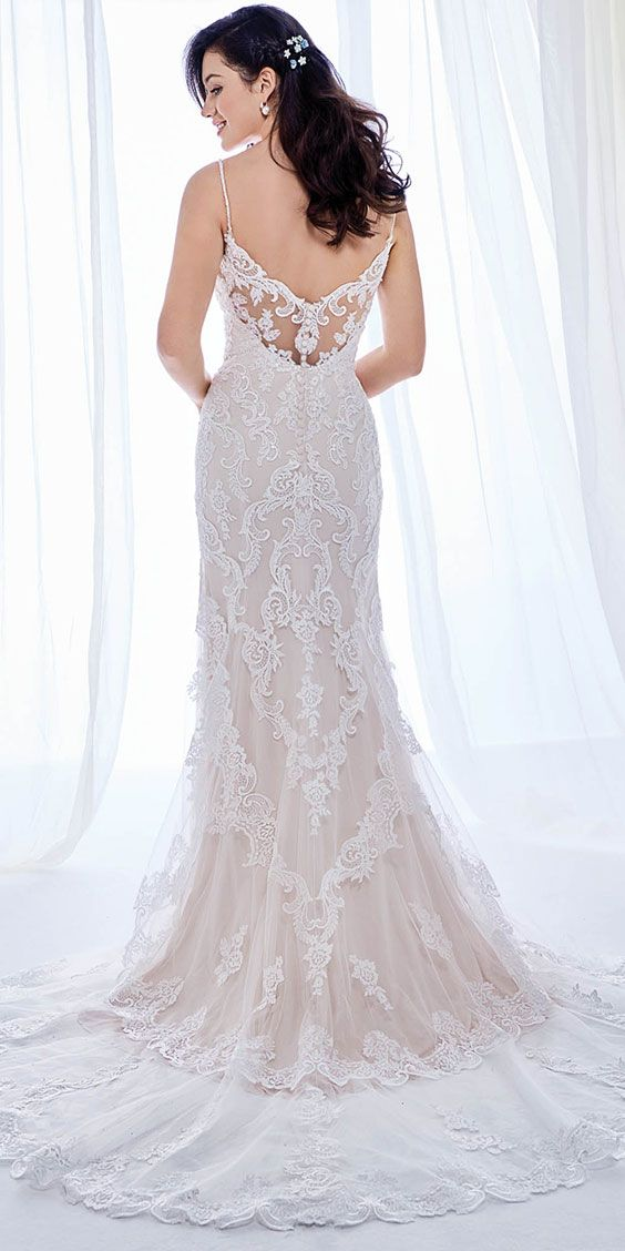 ed847c005ff17 Ella Rosa BE397 | dashing fitted embroidered lace gown | with low neckline,  and back | spaghetti straps | romantic wedding gown #weddinggown # weddingdress