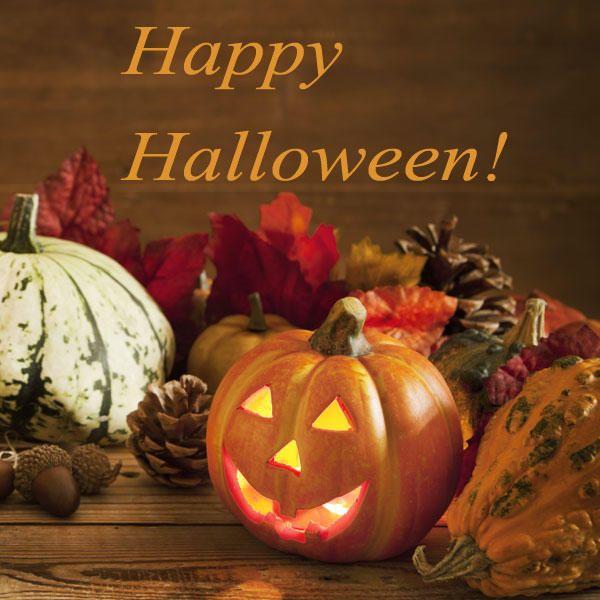 Halloweensprüche | Halloween Spruche Mit Grusel Sussigkeiten Garantie Halloween