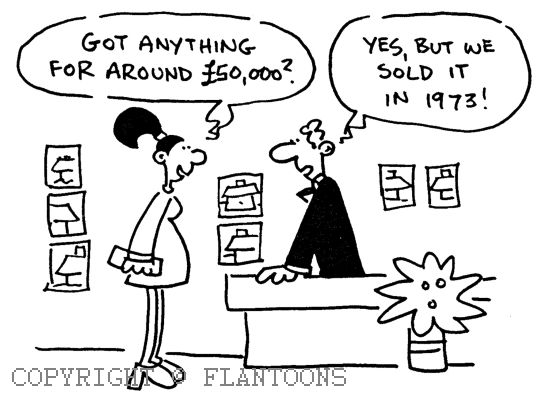 Property Cartoon Real Estate Humor Home Team Friday Humor