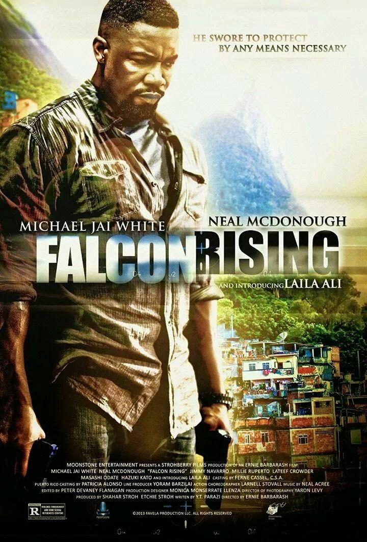 Pelicula De Estados Unidos Del Ano 2014 Titulo Falcon Rising Favela Venganza Fatal Venganza Fatal Direct Michael Jai White Laila Ali Best Movies List