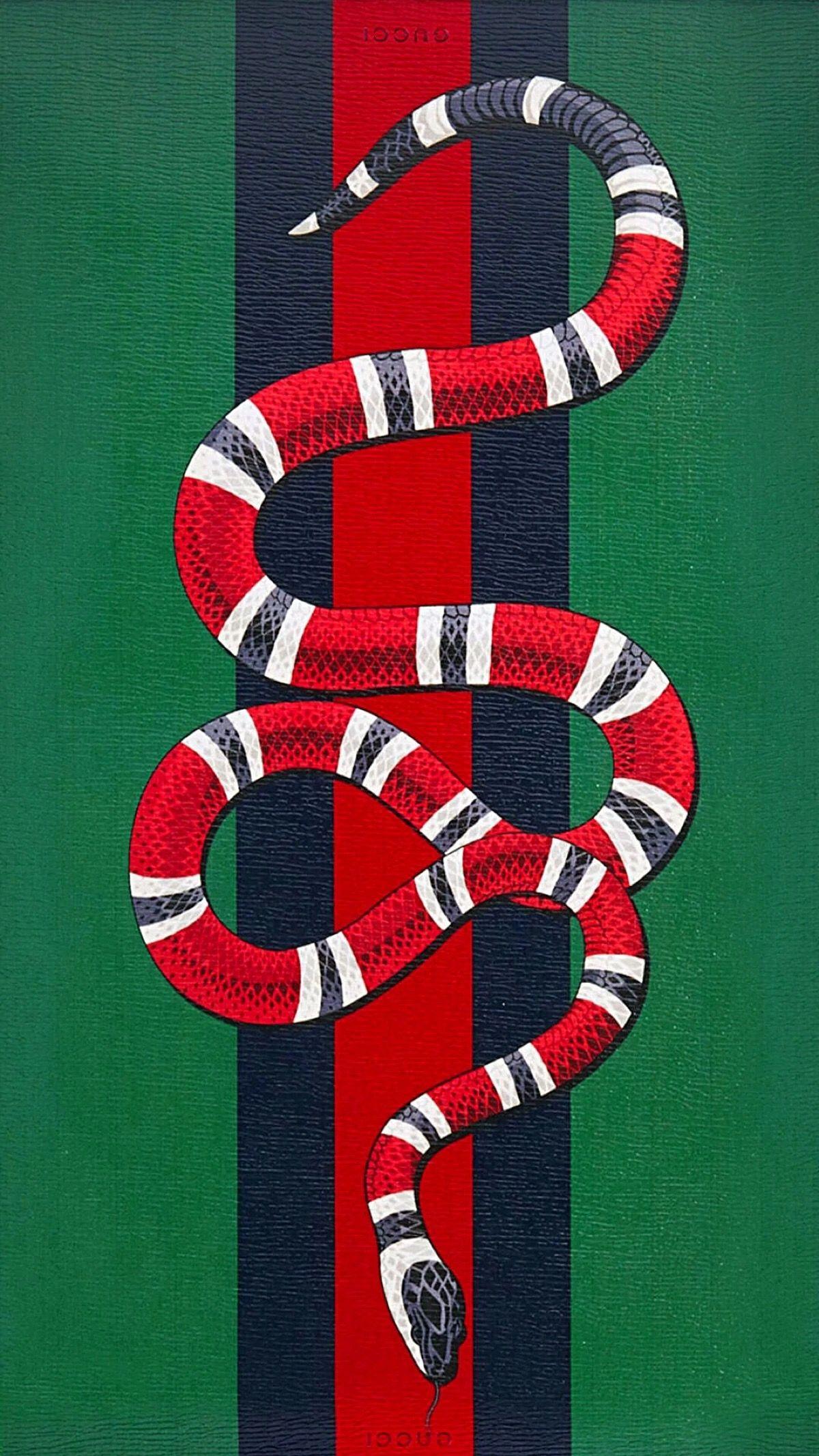 Snake Gucci Fondos de pantalla de iphone, Iphone