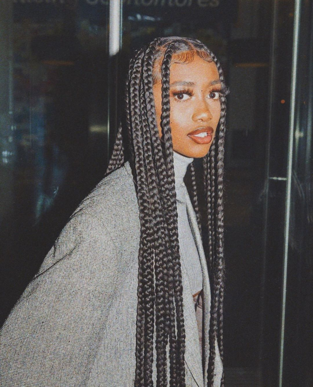 Pin On Black Beauty In 2020 Black Girl Braided Hairstyles Braided Hairstyles Curly Hair Styles