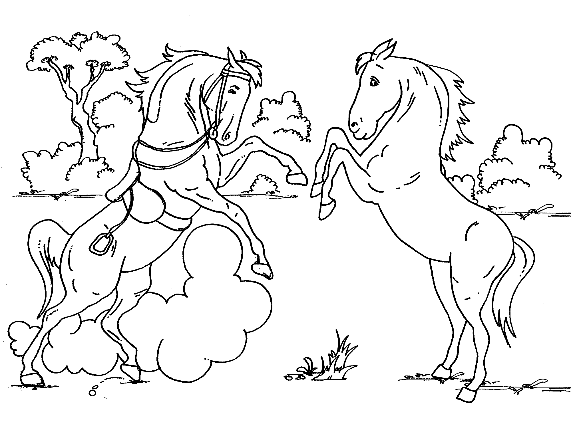 Baby Horse Coloring Pages Fighting Horse Colouring