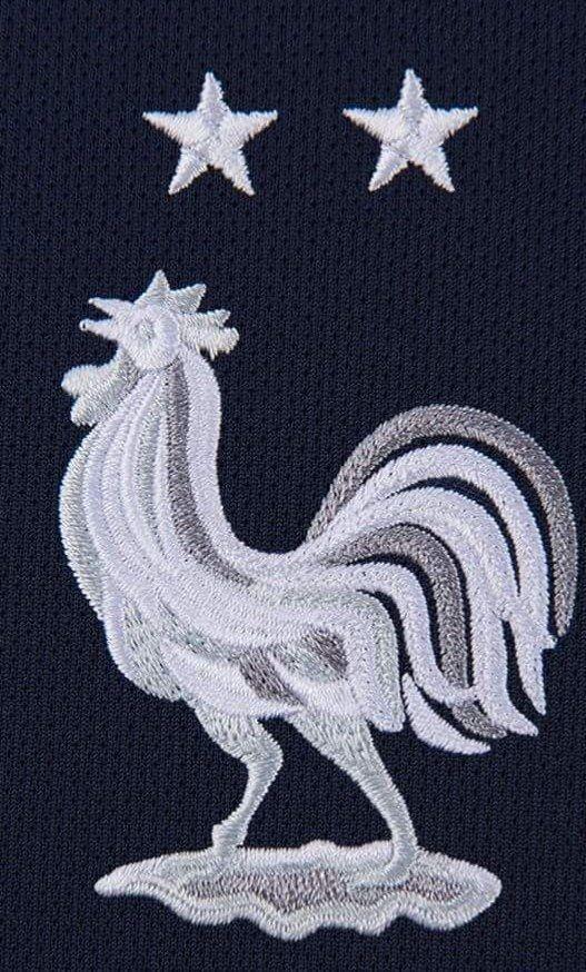 Le Coq Aux Deux Étoiles   Logo équipe de france, Équipe de france, Equipe de france football