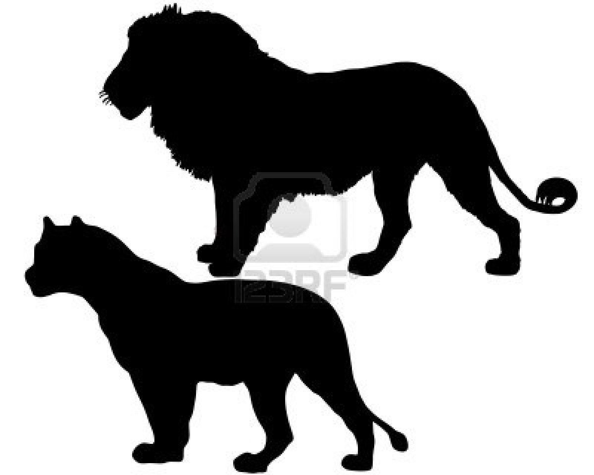 hight resolution of lion and lioness silhouettes