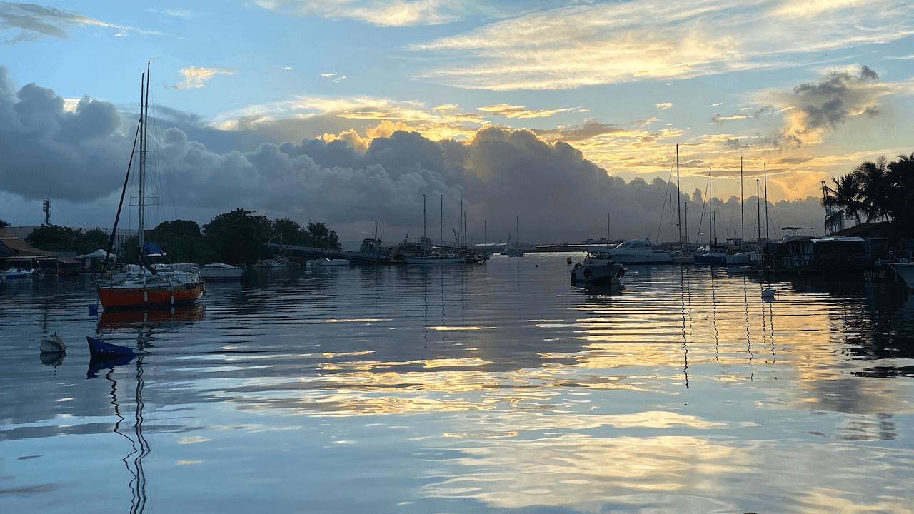 J'ai retrouvé le terrain ces dernières semaines et je peux vous assurer que ce n'est pas facile de mener des interviews, d'effectuer des reportages. Avec ce satané coronavirus plus que […] L'article Sur le terrain en Guadeloupe : 3 posts très appréciés sur Twitter est apparu en premier sur Le blog de Mylène Colmar.