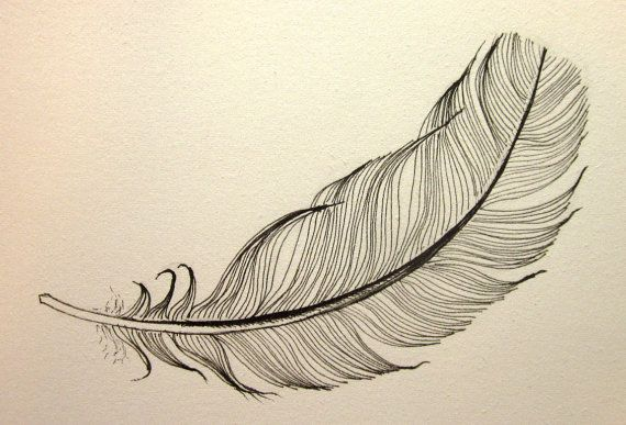 Line Art Feather : Floating black feather original ink drawing by anne bags on etsy