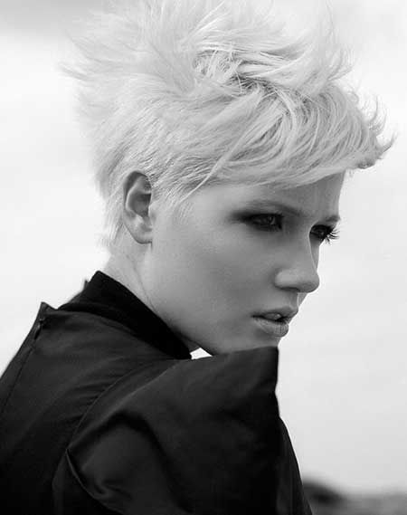 Incredible 1000 Images About Short Silver Hair Pixie Cuts On Pinterest Short Hairstyles Gunalazisus