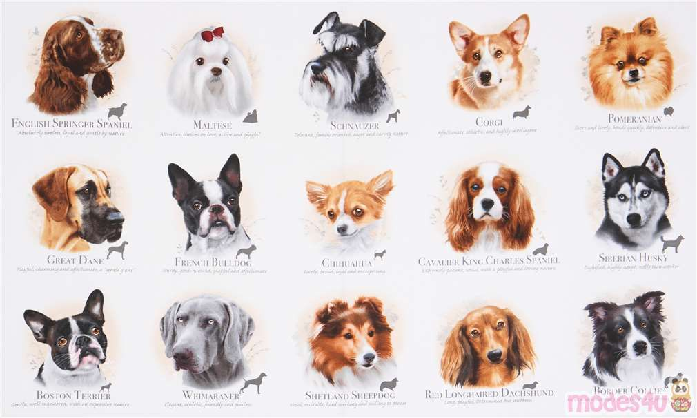 Light Cream Cute Dogs Name Dog Breeds Fabric By Elizabeth S Studio