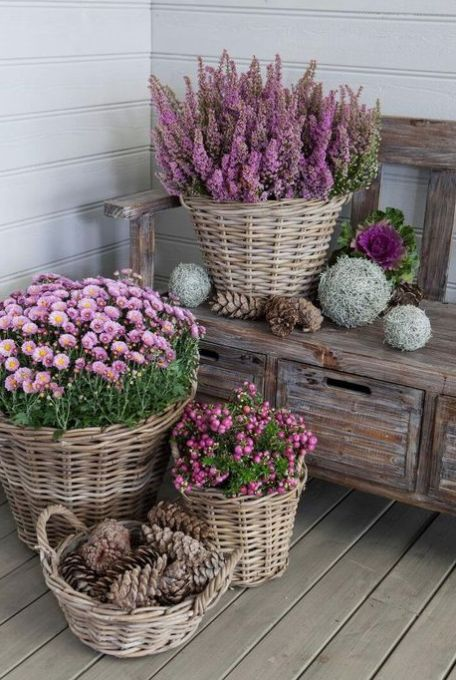 15 Unique and Beautiful Container Garden Ideas-Front Porch Decor-Wicker Basket G…