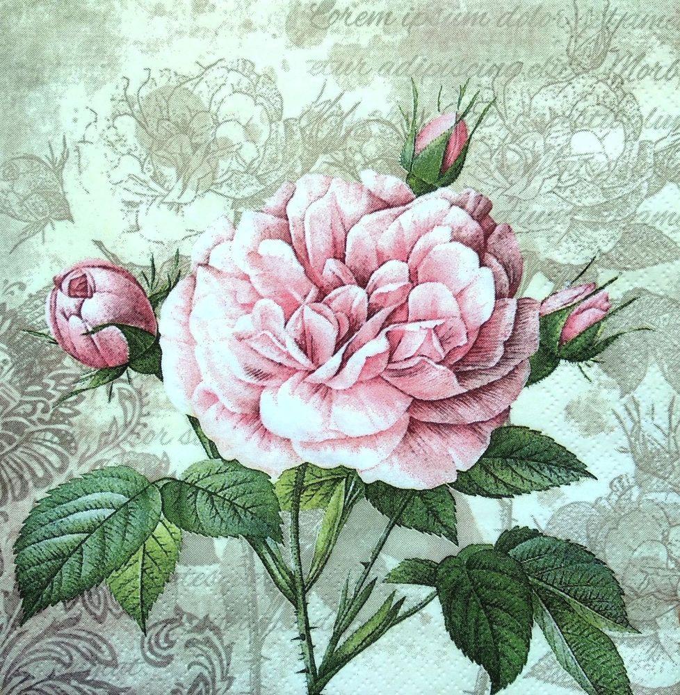 4  Single Lunch Paper Napkins for Decoupage Craft Sagen Vintage Napkin Roses 1