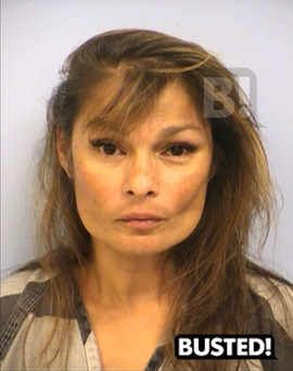 Busted! Veronica Hildebrand Mugshots on Busted! Mugshots   Just