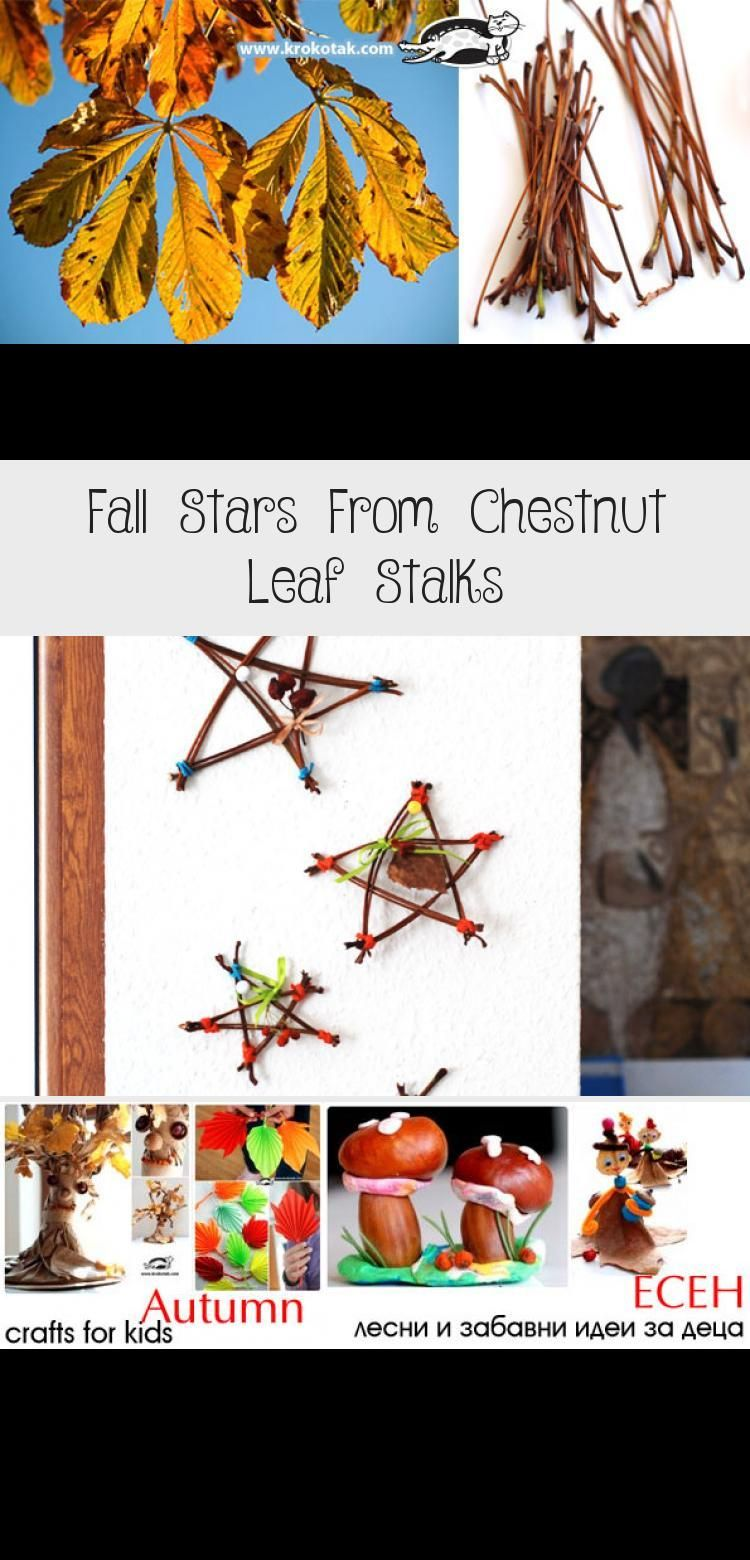 20 Ideas To Decorate With Chestnuts A K A Horsenuts Buckeyes Conkers Crafts Conkers Craft Autumn Crafts