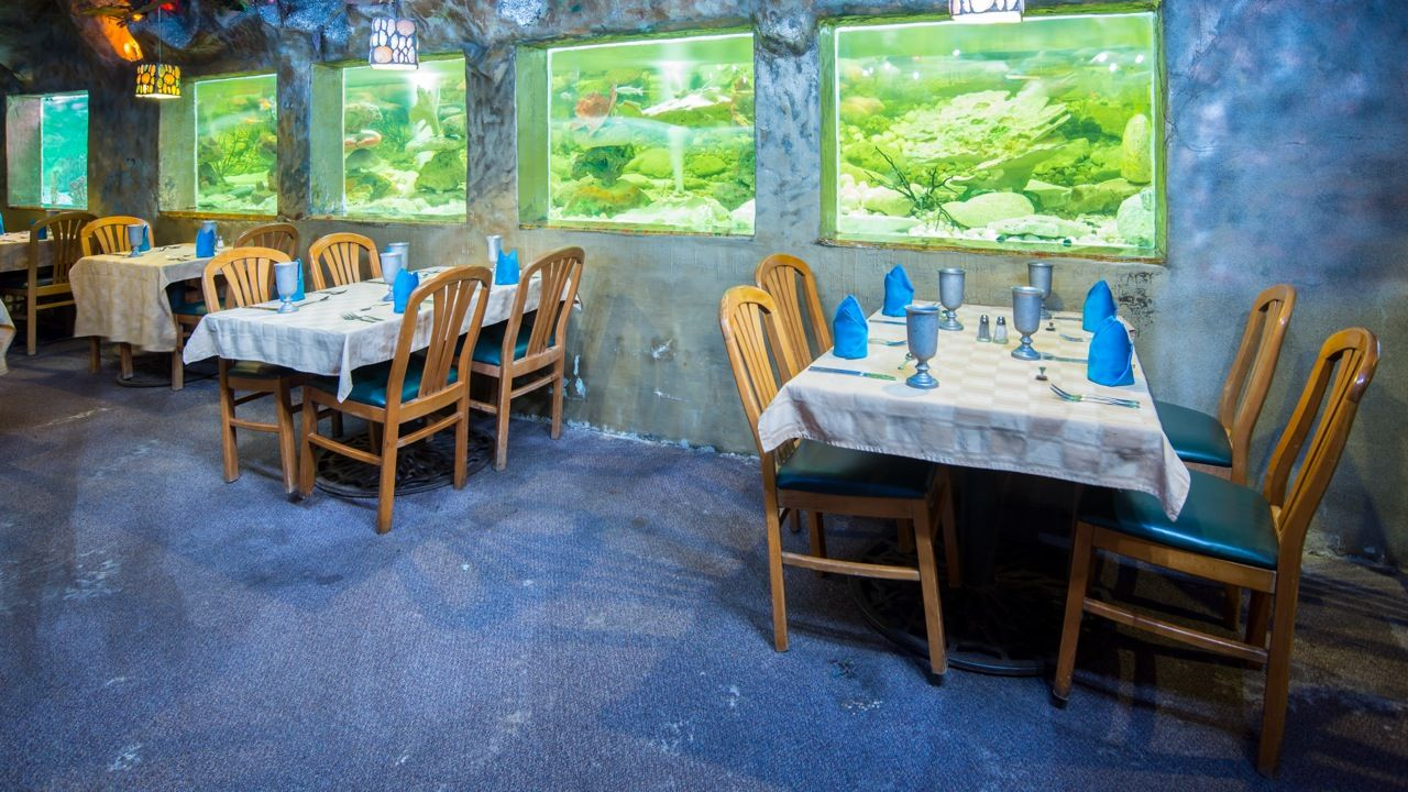 The Big Tank With The Big Fish Enjoy Delicious Catch Of The Day From Aruba S Ocean While Enjoying A Great View Dining Great View Home Decor