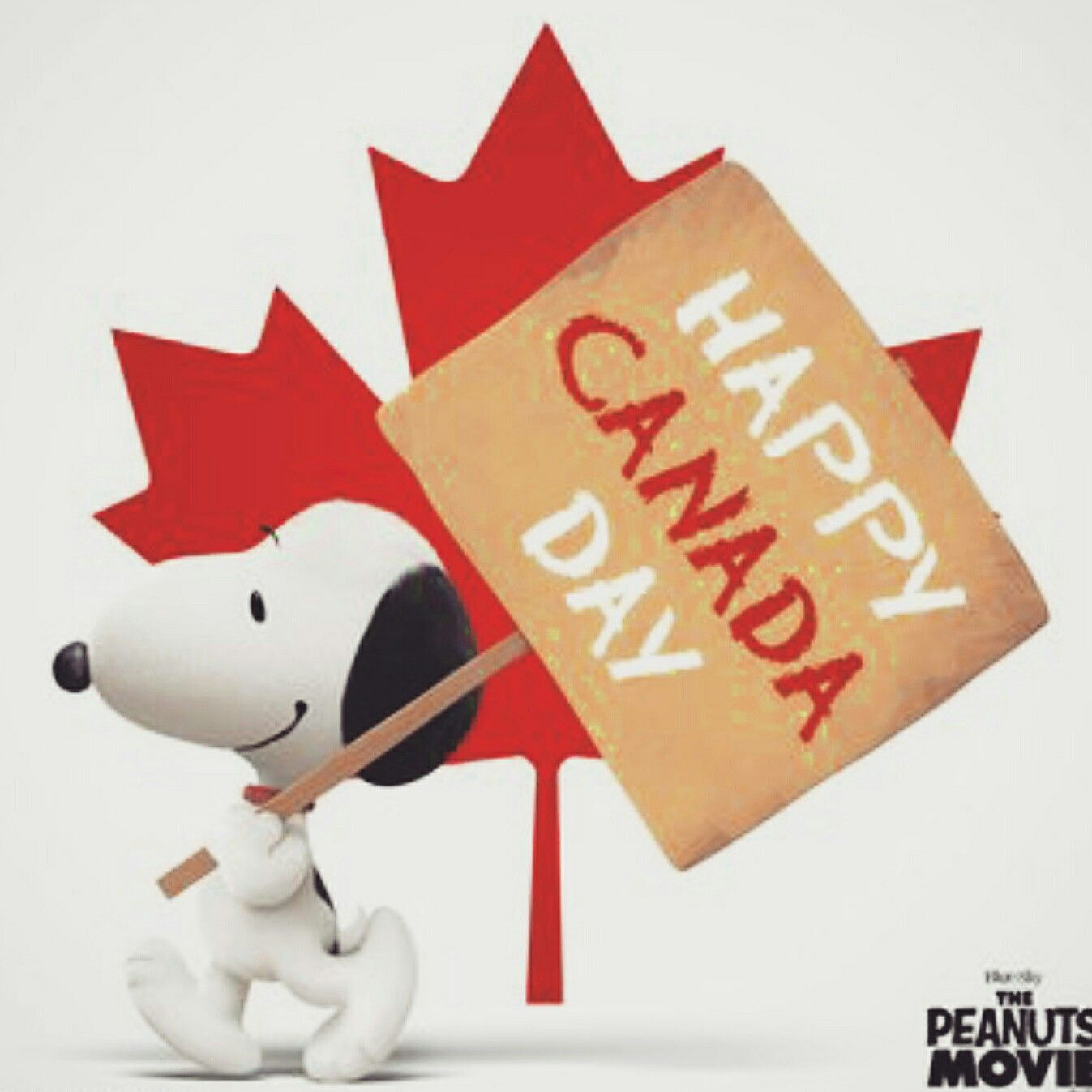 Happy Canada Day Canada Day Pictures Happy Canada Day Canada Day