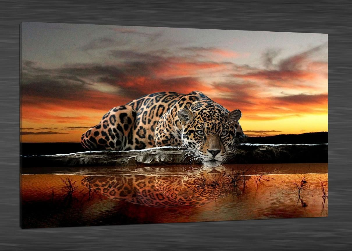 Wedding decorations hd  Hd Canvas Print Home Decor Wall Art PaintingNo Framed Lake Leopard