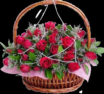 Красивые розы,цветы PNG. Обсуждение на LiveInternet - Российский Сервис Онлайн-Дневников