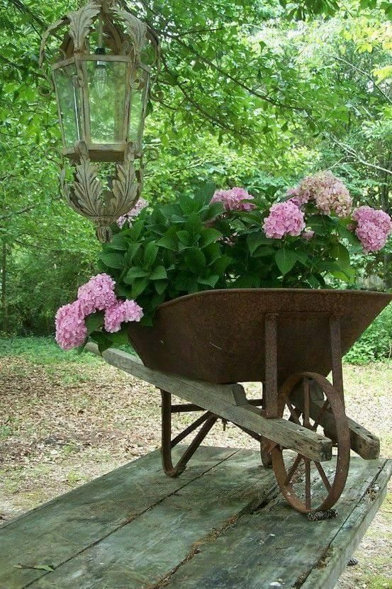 Ideas para jardinería - a intentar
